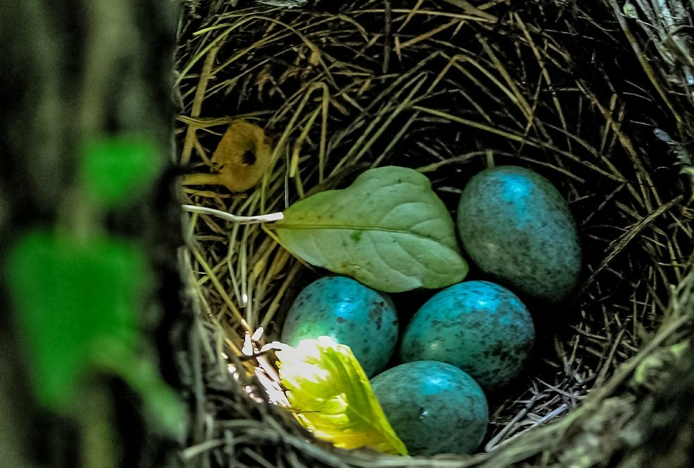 Tweaking Xdebug to allow deep function nesting